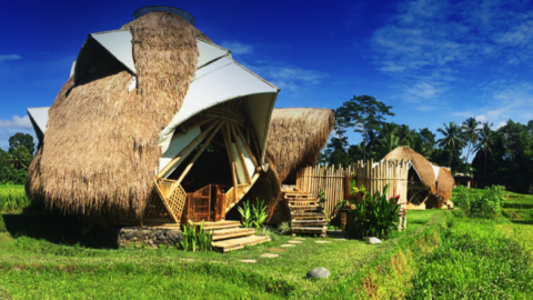 Beautiful Bali – StarGate at NewEarth Haven
