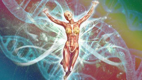 How To Avoid Autoimmune Disease – Part 2